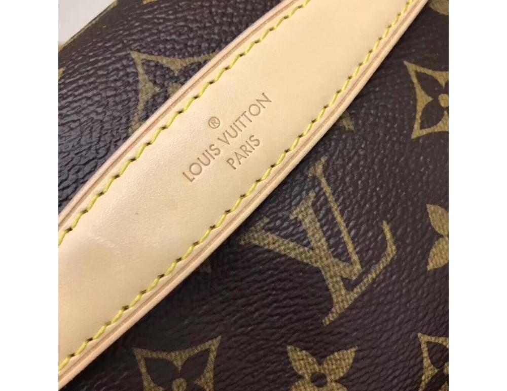 Коричневая сумка на пояс (бананка) Louis Vuitton Bumbag BAN-LV150 - Фото № 4